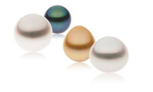 South-Sea-Pearls-
