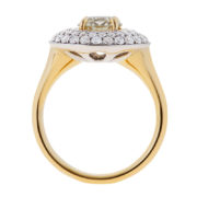 Brilliant Yellow Diamond Engagement Ring - The Evelyn